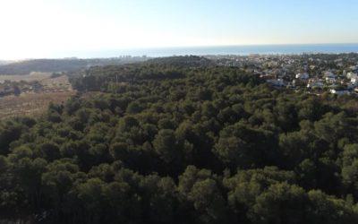 Ecologistes de Cunit convoquen una manifestació per aturar la urbanització d'un bosc autòcton de 91.000 m2